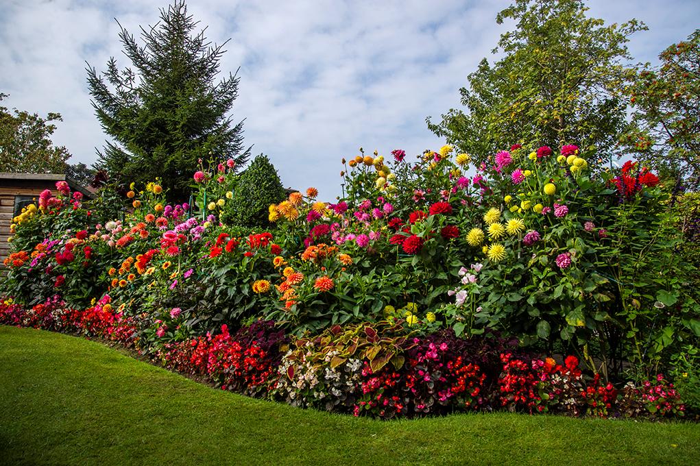 Genial National Garden Scheme