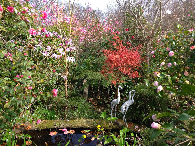 The Haven, South Hams, Devon, PL9 0DQ – National Garden Scheme