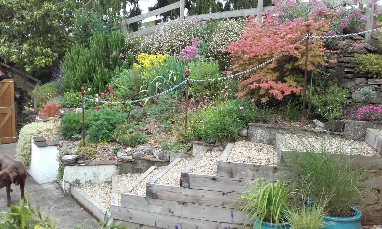 The Hollow, Blandford Forum, Blandford Forum, Dorset, DT11 8NJ   National  Garden Scheme
