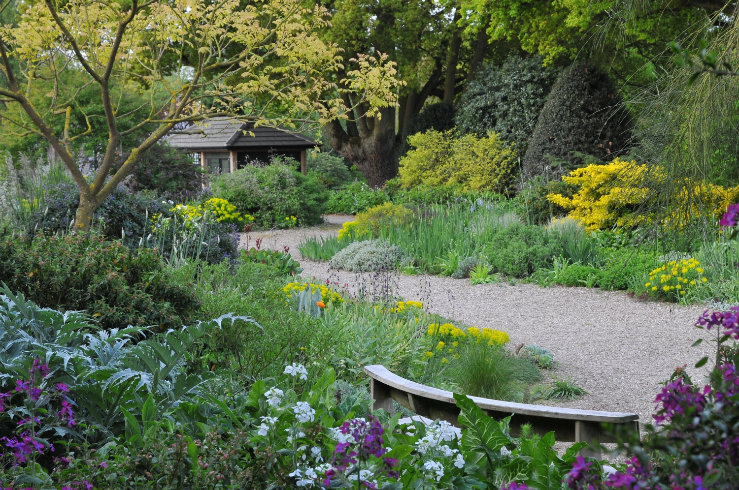 Beth Chatto Gardens, Colchester, Essex, CO7 7DB - National ...